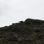 Artig steinformasjon