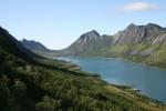 Oversiktsbilde av Gryllefjord