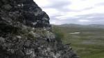 Vekster presser seg frem på de merkeligste steder, her en stein.