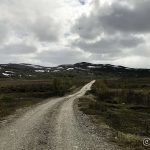 Veien oppover mot Kokelvdalen