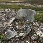 """Kom over dette """"gravstedet"""". Ikke gravsted, men pussig korsen steiner ligger"""