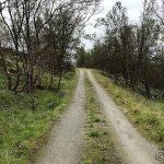 Veien i Kokelvdalen
