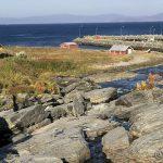 Lett og se på fjorden at det er mye vind