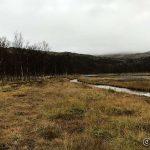 Før æ starta hjemover, et lite bilde mot Kokelvdalfossen