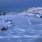Veien inn var nesten blåst fri for snø