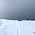 På tur mot Rottelvbrua og her har allerede noen gått og lagd spor
