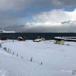 Måtte nyte utsikta før æ starta med å rødde bort snøen