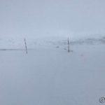 Tenkte å gå til Rottelvbrua, men det ble tett og det var mye snø å grynne i, så æ gidda ikke