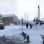 Var noen turist i sentrum i dag, som kom i land fra hurtigruteskipet MS Nordkapp