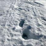 Prøvde å skulle følge gamle skuterspor og gå opp på Russefjellet, men som den kan se, ikke aktuelt