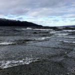 Godt med bølger innover Revsbotn i dag 🌊