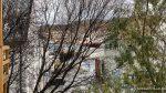 Trærne langs Salsgata er fri for blar og en kan se mer, her hurtigruta på tur til kai
