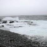 Ho snudde fort når sjøen nærma sæ