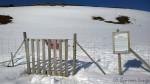 Det berømte/beryktede reingjerdet som omkranser Hammerfest