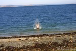 Årets første bad skjedde i Porsangerfjorden