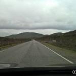 Bjørnlia i Repparfjordalen, skogen ødelagt av lauvmakk