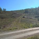 Opp denne traktorveien tar æ av fra Kokelvdalveien opp mot Råttoppen