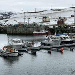 Havna og småbåtene