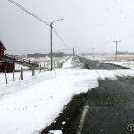 Våte snøfnugg daler ned og gjør det hvitt ute i dag