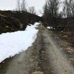 Minker med snøen på veien