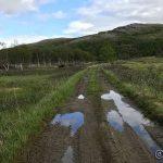 Veien har enda spor etter siste regnskur
