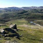 Også når en ser inn mot enden av veien i Kokelvdalen er det lett å se døde trær. :(
