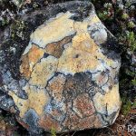 Kom over denne fargerike steinen på Russefjellet