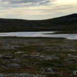 På tur mot Lungatoppen passerte æ dette vannet og det er lett og se at det er mye vind