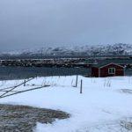 Moloen i Kokelv får kjørt sæ med sjødrefs