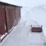 Fjerna litt snø på overside av fjøsen, slik at det ikke blir så mye. selv om æ ikke kan kjøre opp bakken