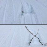 Et lite hull eller råk rett ved skisporet så æ merka det med et par kvister