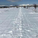 Snøen til Rottelvbrua bar fint i dag, utenom rett før brua kor æ datt gjennom flere ganger