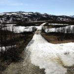 Siste lille bakken ned til Rottelvbrua er det fortsatt snø