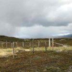 Akkurat passert Rottelvbrua og en byge tar mæ snart igjen