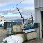 Ankommet Masterelv og NRS jobbe på for å sette ut laksemerdene ved Turnes
