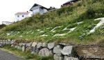 ...langs Jernbanetrasken kor bynavnet er i siden, men forsvinner snart i overgrodd grass