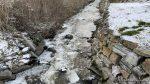 I Storelva var det en aldri så liten isgang i dag